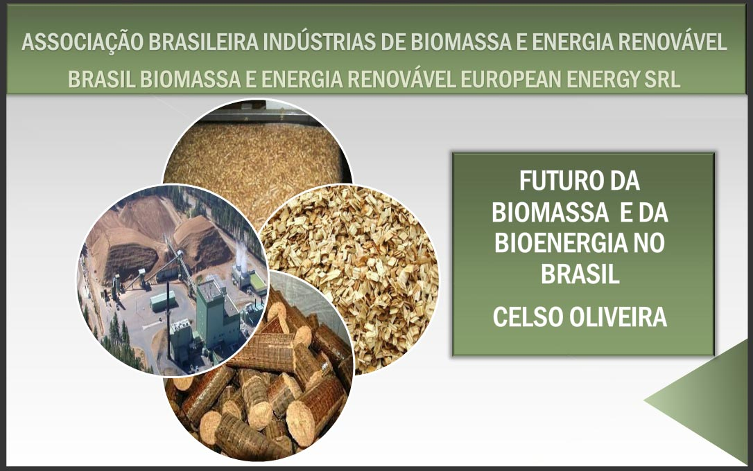 Bioenergia, Biomassa, Energia Renovável, Celso Oliveira, pellets Brasil
